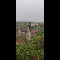 Burrow in Sadhu Vaswani Chowk, Pune