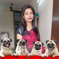 Surabhi Shrivastava Searching Flatmate In Delhi