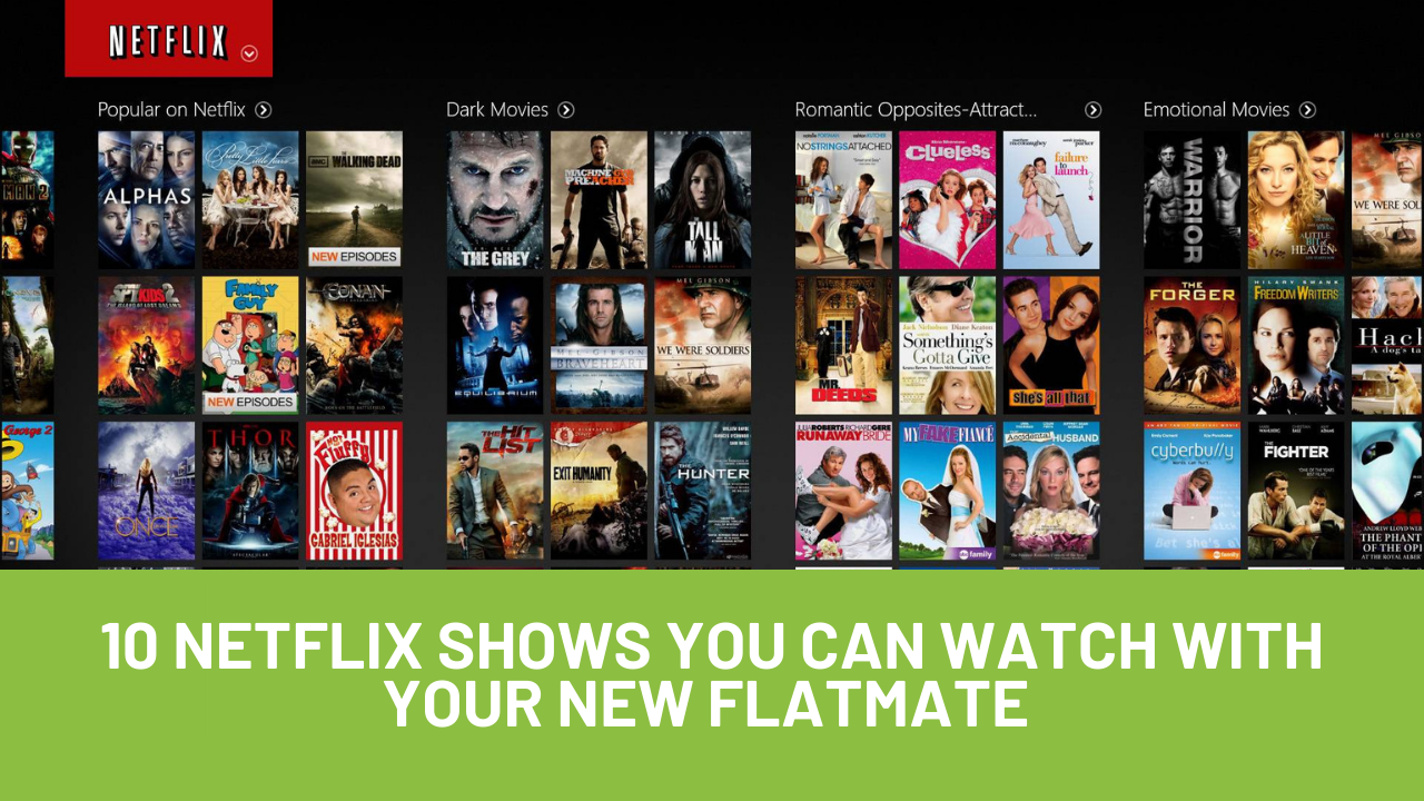 10 Netflix Shows You Can Watch With Your New FlatMate